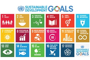 #CoopsFor2030: Co-operatives pledge to the UN's Sustainable Development Goals