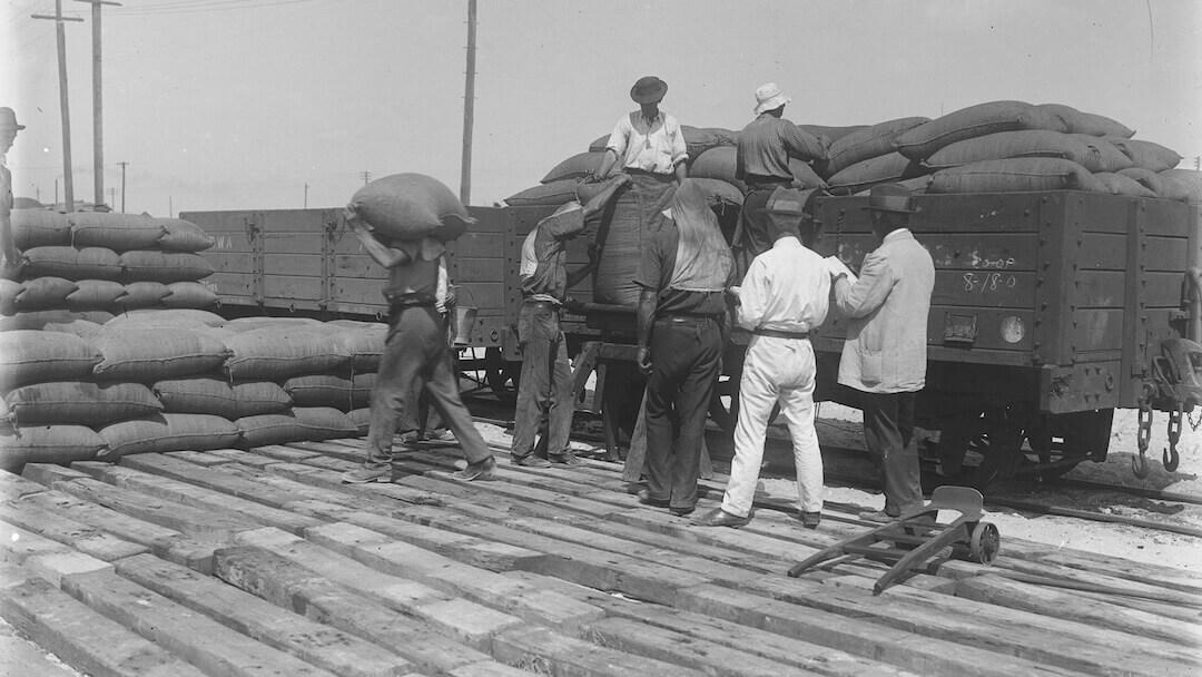 Before bulk handling - lumpers on Fremantle docks 1920s