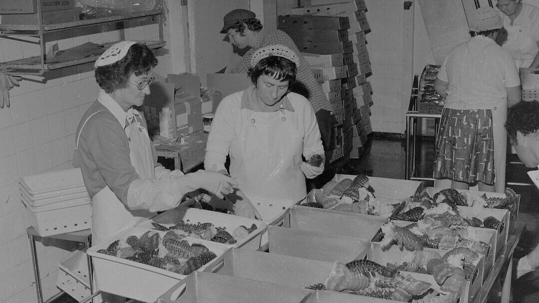 Women processing Abrolhos lobster