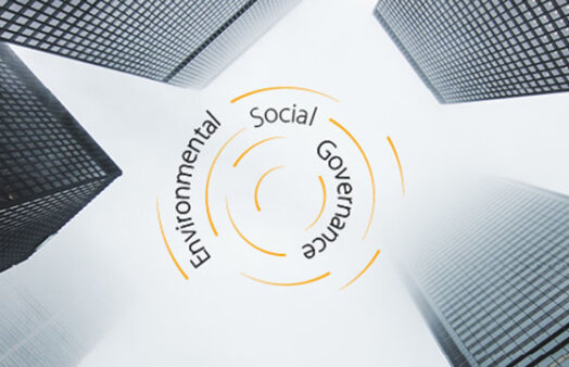 BCCM 2021 Summit promo - Environmental, social, governance